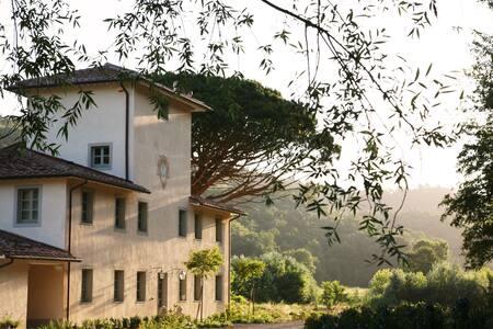 Villa Valle, Villa Saletta estate - Forcoli - Villa