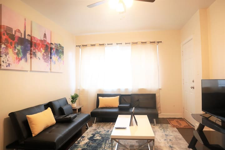 Newly Renovated, Spacious, Modern Apartment in DC