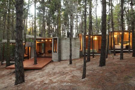 bosque y playa - Mar Azul - Haus