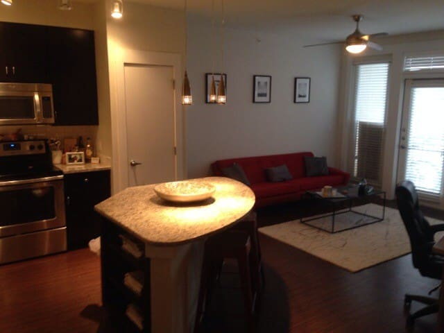 Sxsw Rental Near Downtown Apartments For Rent In Austin Texas United States