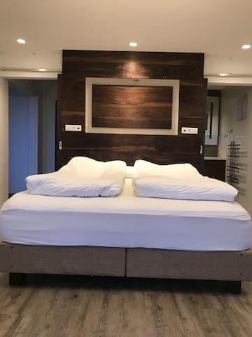 Master bedroom with privat bathroom