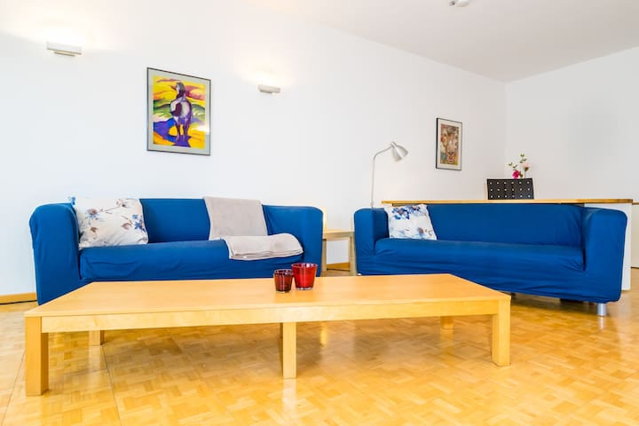 Spacious apartment with large swimming pool - Geisenheim - Lägenhet