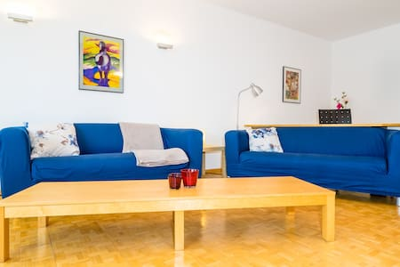 Spacious apartment with large swimming pool - Geisenheim - 公寓
