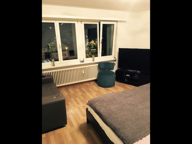Beautiful and 3 Bus stops away from ZRH Airport. - Kloten - Apartament