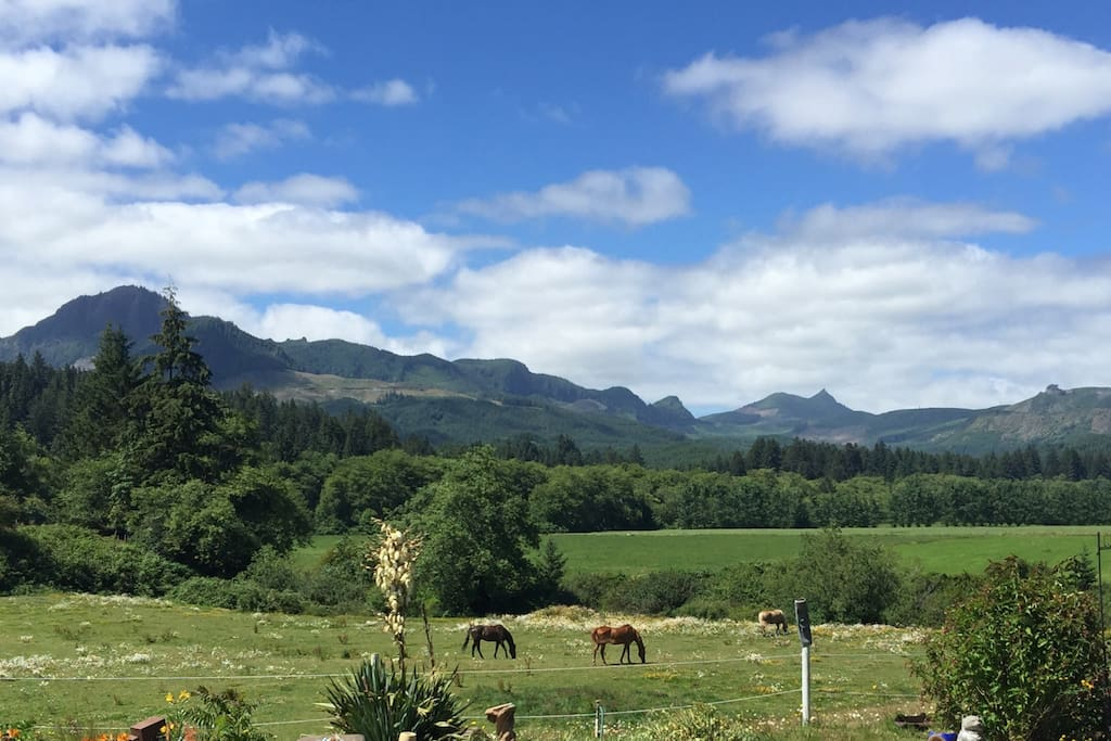 Bed And Breakfast Nehalem