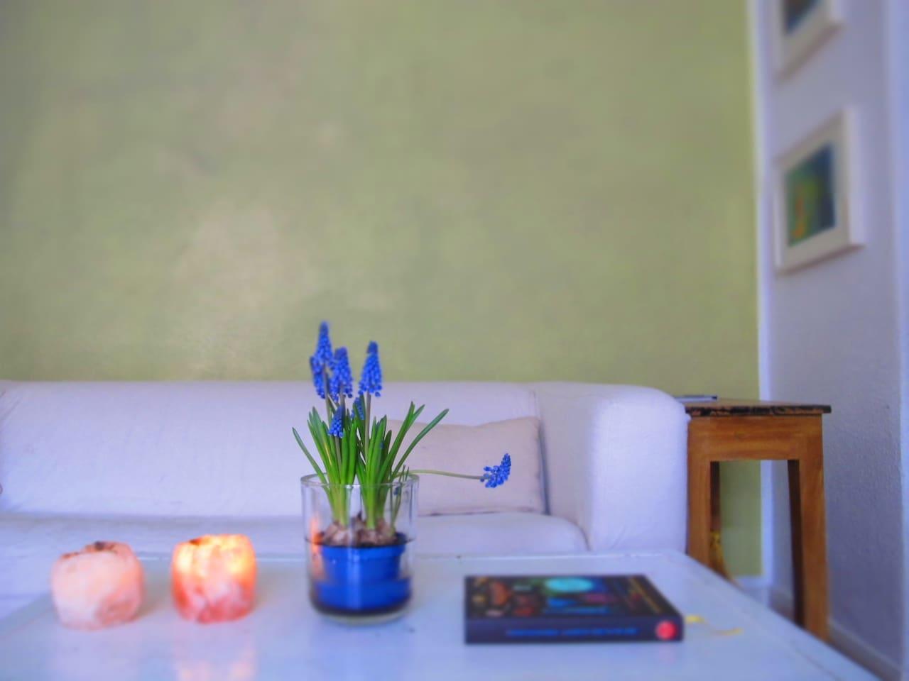 Freundliches, helles Wohn- und Esszimmer!