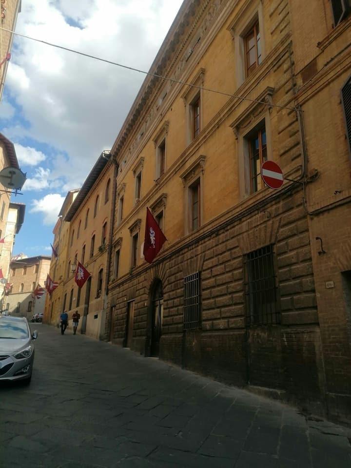 Bilocale in Salicotto