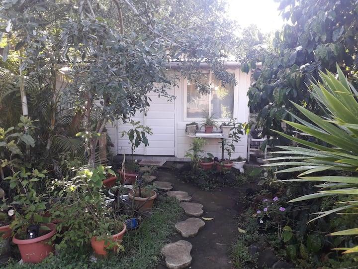 le bungalow derrière les bananiers