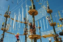 Take Flight Aerial Adventure course is 20 minutes away