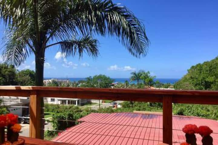 Breezy Tree-Top Loft, PanoViews, Walk to Beach