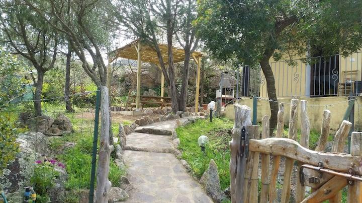 Casa Sonia, Costa Smeralda.