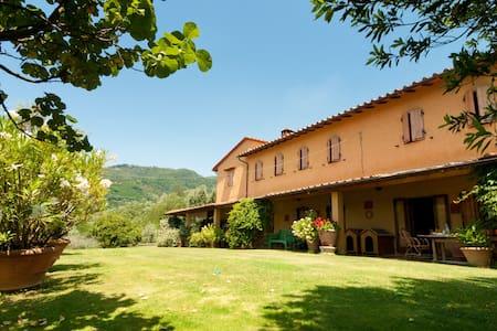Very Nice Historic Tuscan Villa - Massa e Cozzile