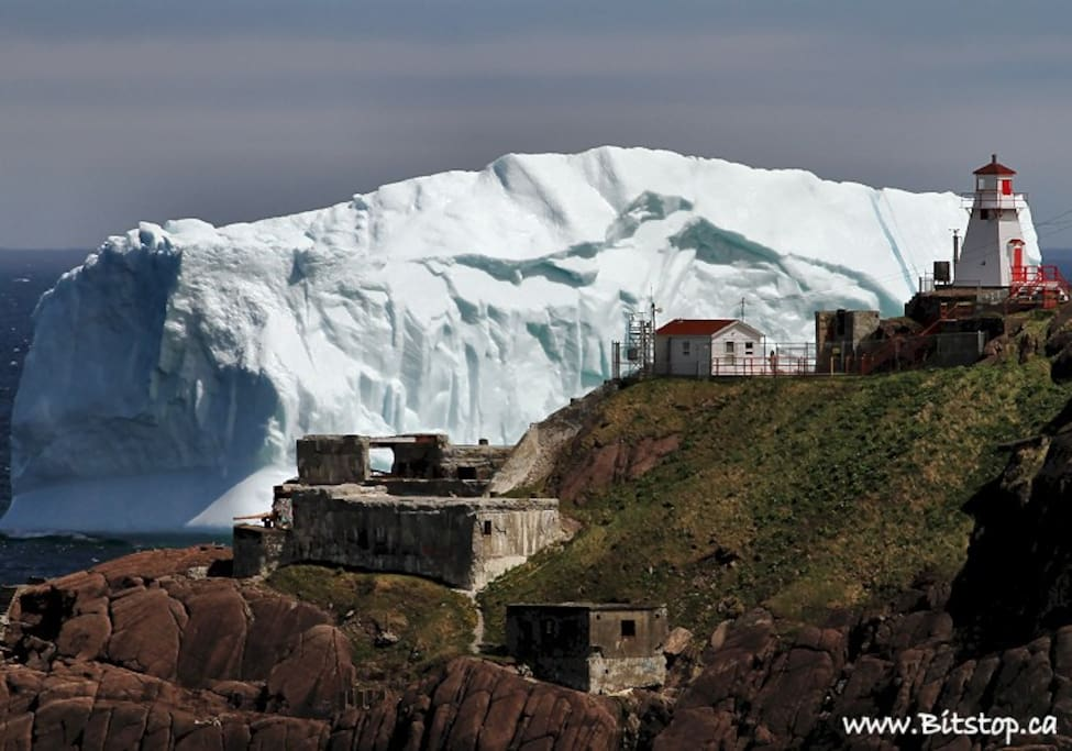 Iceberg at the mouth of the harbour