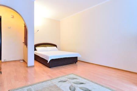 Comfortable apartment  - Donezk