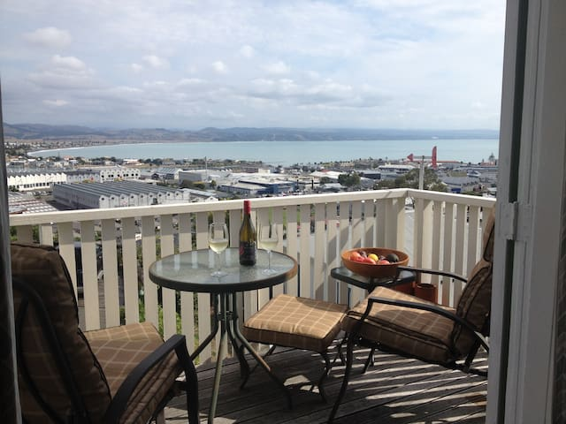 Spectacular views of the bay - Napier