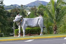 Calf's Sculpture at Town's Entrance