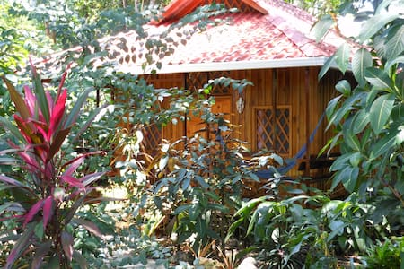 Bungalow is open, airy and bright, has a huge bathroom with an open rain shower.Always a nice tropical breeze and it is surrounded by plants and tress that are teeming with wildlife. Daily maid  and full breakfast included in the rate