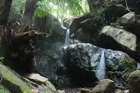 Ecoscape: Nature Adventure Solitude (Dorms) - Devala - Bed & Breakfast