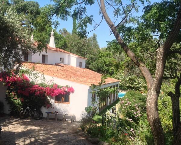 Casa Corgos Quarto do Lagarto - Monchique