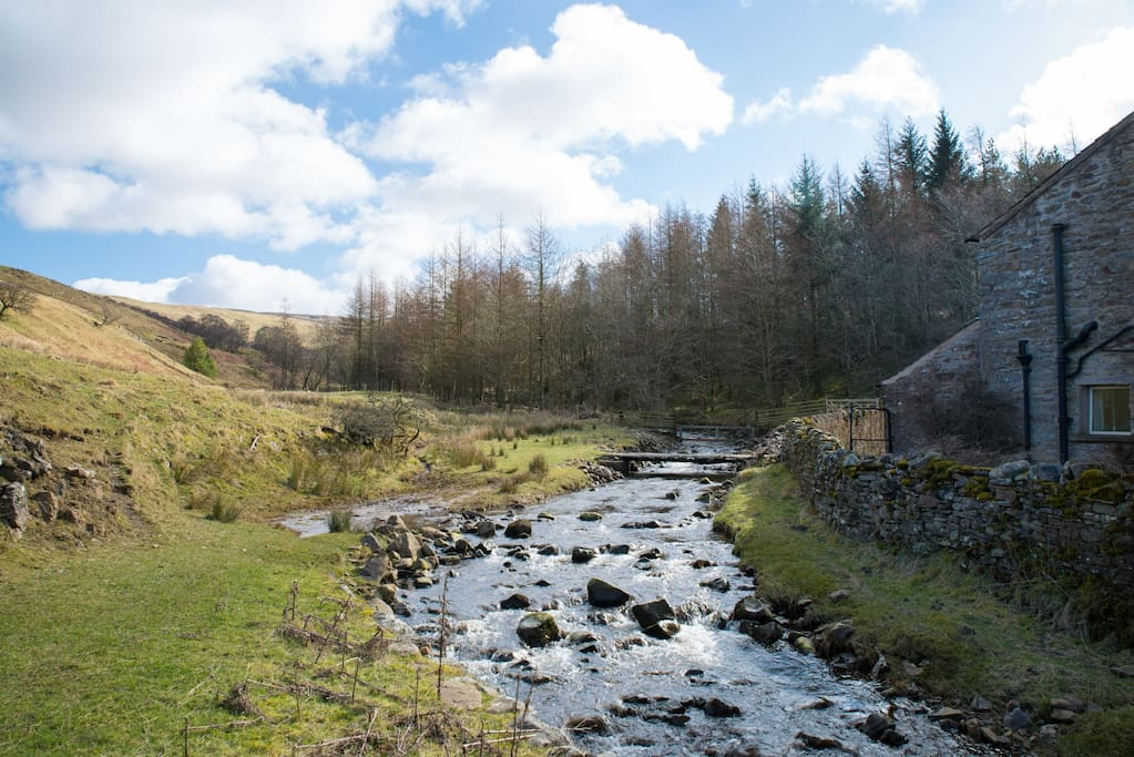 Ladthwaite beck in very early spring