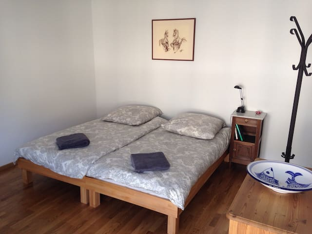 Very centrally located studio - Bern - Lejlighed