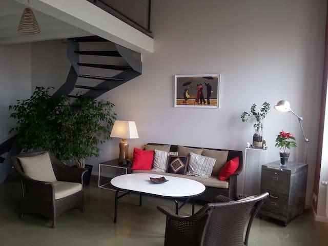 Chambre d'hôtes chez l'habitant - Saint-Étienne - Apartment