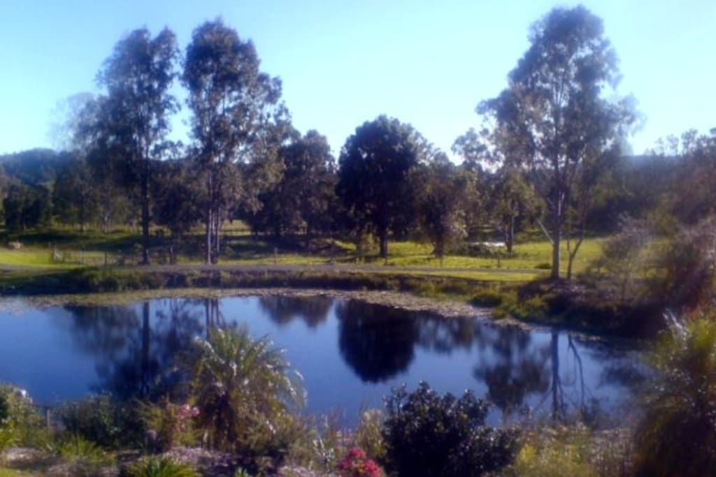 View towards the house lake and surrounds