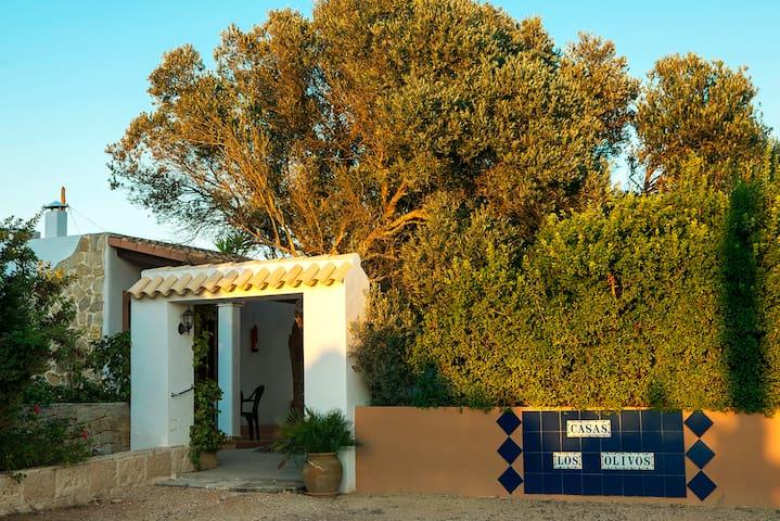 Apartment Los Olivos (6 PAX) - ES CARNATGE - FORMENTERA - Apartment