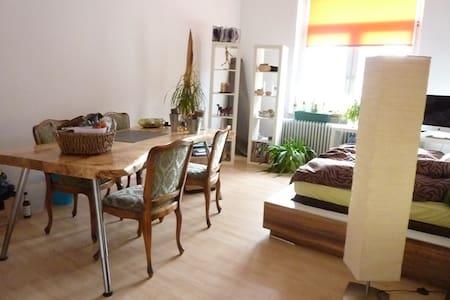 Helles & großes Zimmer  - Apartment