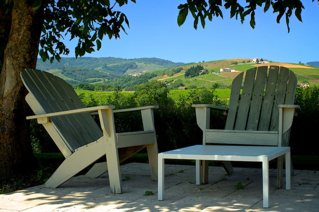 Onder de Notenboom, in de schaduw aan het zwembadLounge chairs by the pool overlooking the vineyards.
