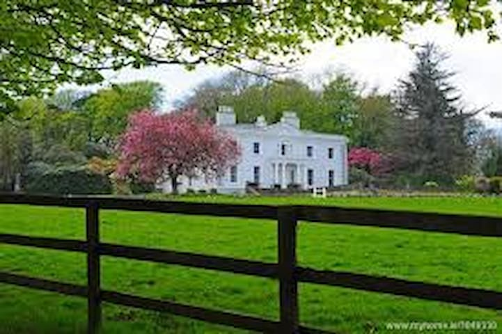 Swan Lake House - Near Headford - 家庭式旅館