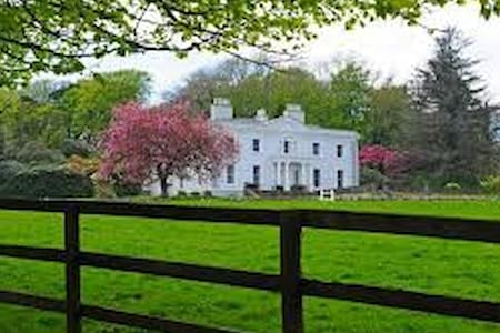 Swan Lake Manor - Near Headford - Penzion (B&B)