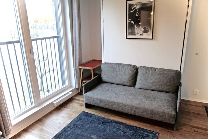 Modern central studio with a view
