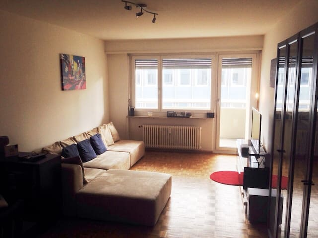 1 bed central apt. for BaselWorld - Basel - Daire