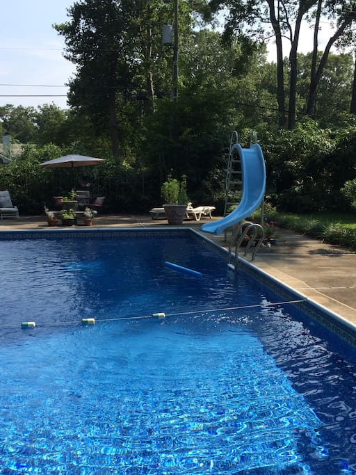 Take a dip in our backyard pool