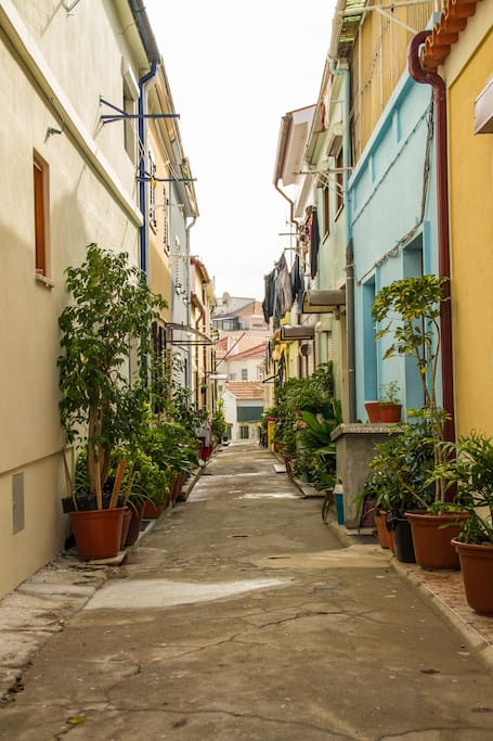 Don't miss the chance to stay in the most flowery and traditional neighborhood in town!