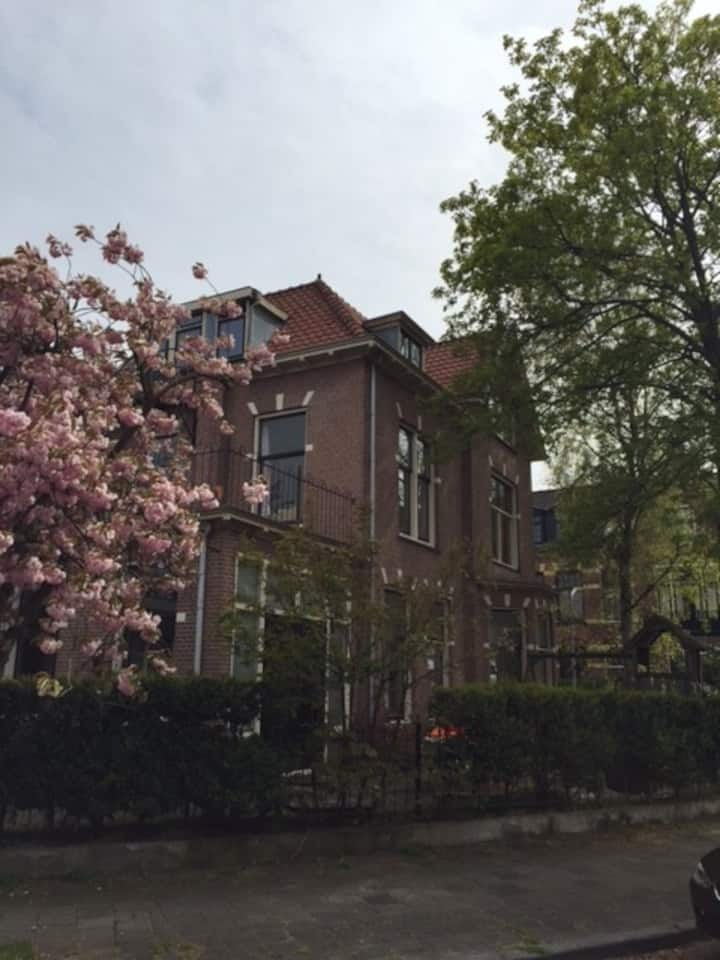 spacious familyhouse in the centre of haarlem