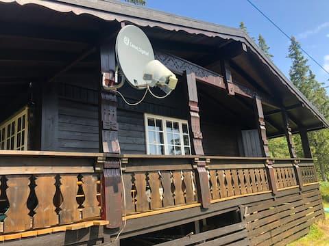 Enkel og koselig hytte på Kyrkjebygdheia til leie