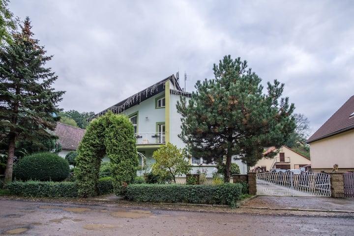 MIRO house