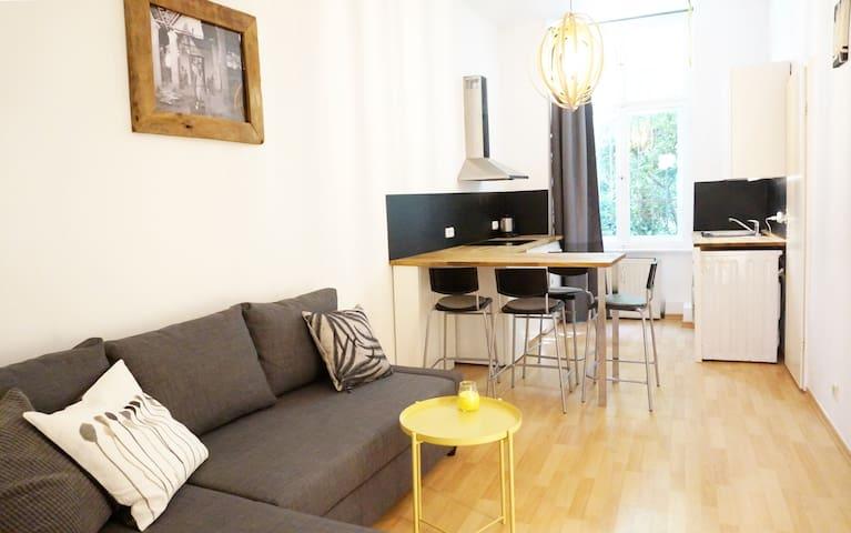 One bedroom apartment in popular Prenzlauer Berg
