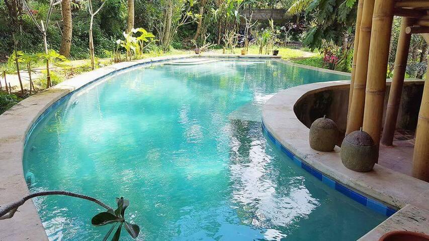 Pool View #1