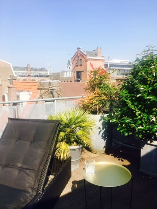 Sunbathe on the roof