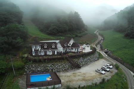 구름국화_아름다운 자연 속의 힐링캠프 민둥산하이원민박 - Nam-myeon, Jeongseon-gun