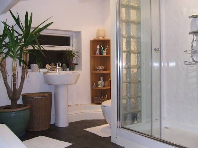 Spacious bathroom with large shower.