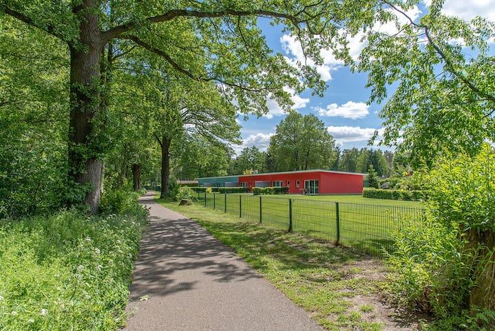 Bungis - Ferienhäuser am Grimnitzsee (Joachimstal), Haus 17 Seeseite 40 qm, Wohn-/Esszi. mit Pantryküche, 2 Schlafzi., DU/WC, Terrasse