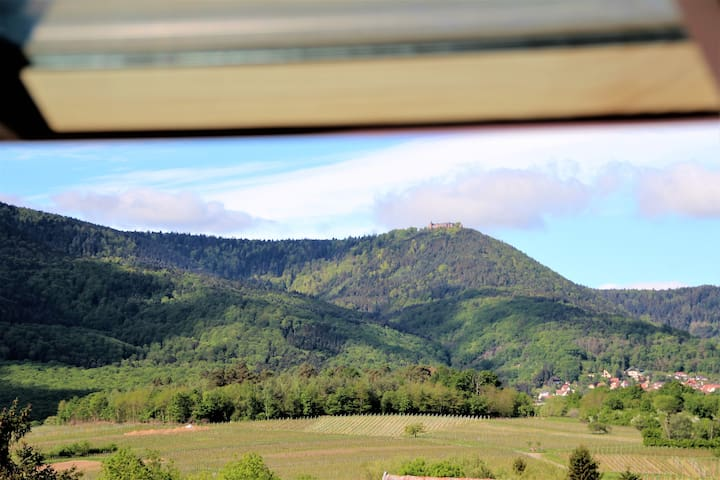 Une fenêtre sur le mont Sainte Odile 90m2