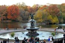Bethesda Fountain Central Park...10 minute walk