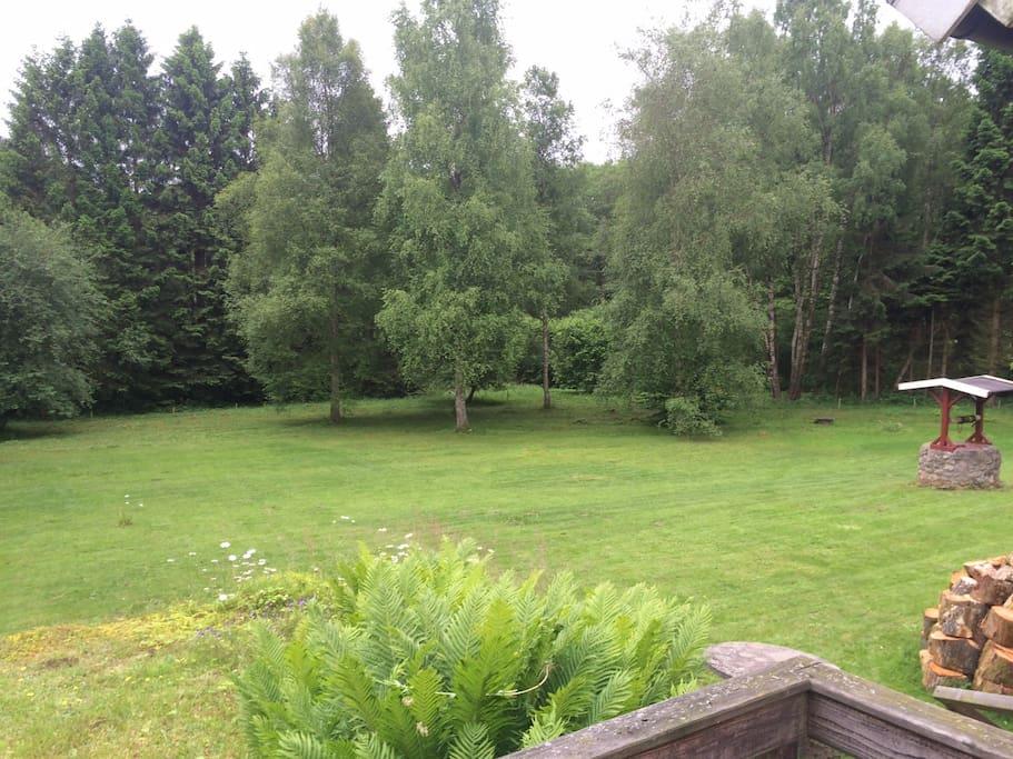 Stor och härlig trädgård
