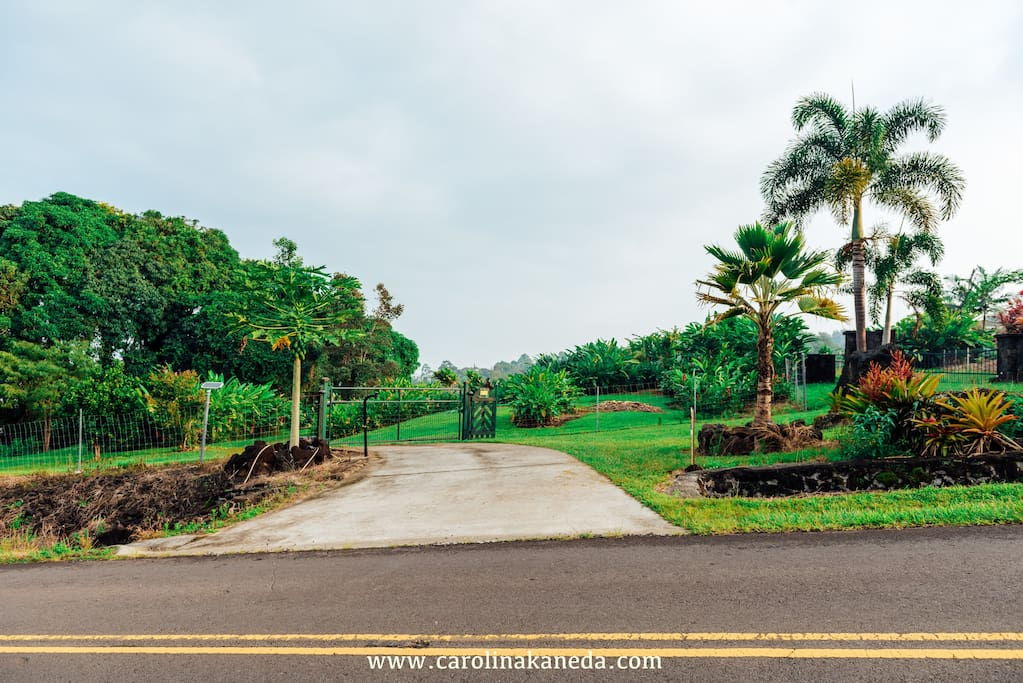 Our entrance from Kamalani St with green farm gate