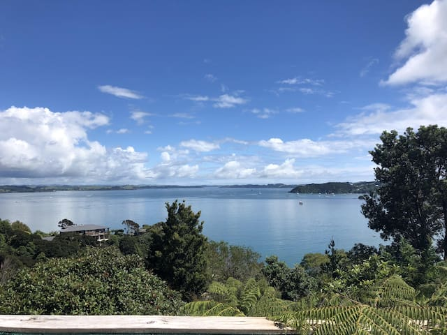 The Tui's View